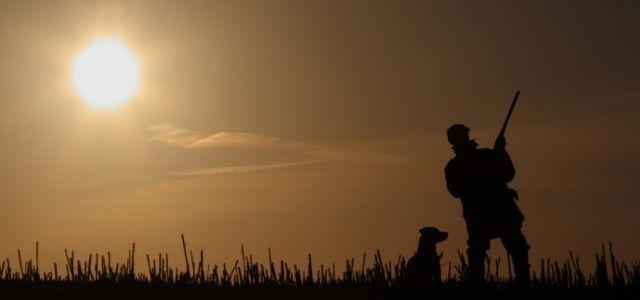 Angmering Park Estate shooting-sunset